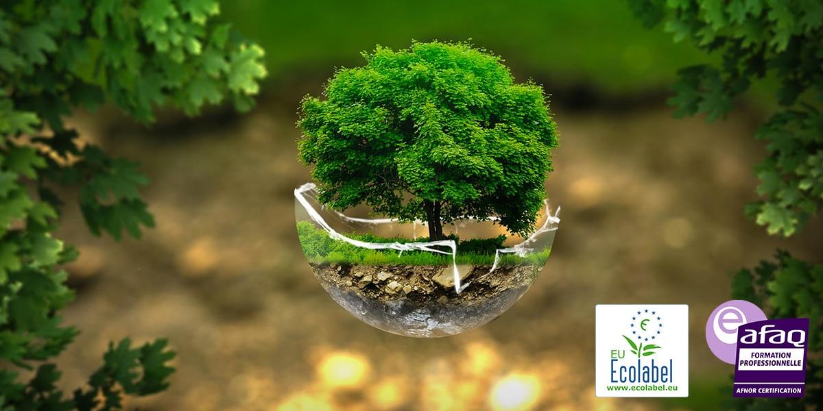 certication-formation-audit-ecolabel-entreprise-proprete-nettoyage