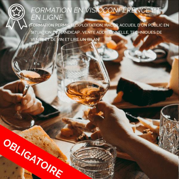 Formation PE, HACCP, Accueil PMR ERP, Vente additionnelle, techniques de vente de vin et lire un bilan